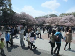 花見客でにぎわう上野公園の